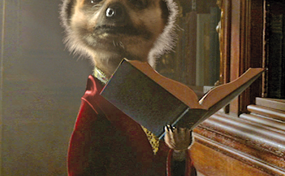 Today I come from Meerkat Harborough!