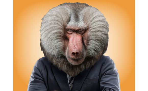 UK IT channel filled with cheeky sales and marketing 'baboons'
